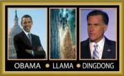 Obama-Llama-DingDong